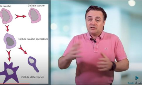 #58 – Pourquoi les cellules souches peuvent être intéressantes en endodontie ?
